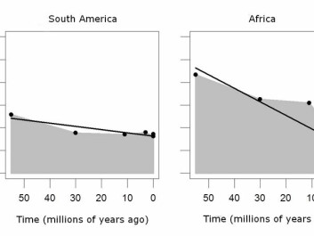 Over the past 55 million years, tropical rainforest areas in Africa and South America have evolved in different ways. In South America, a warm and humid climate meant that the rainforest distribution remained fairly constant. Africa has seen a massive loss of rainforests, especially over the past ten million years, due to massive drying-out of the land.