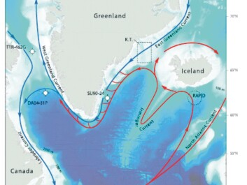 Map of the cold (blue lines) and the warm (red lines) surface currents in the northwest Atlantic.