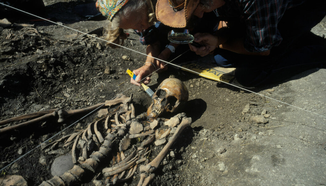 One of the skeletons from the excavations in Sweden. Making comparisons with other archaeological finds enabled the researchers to determine that three of the four skeletons they studied had been hunter-gatherers, and the remaining one a farmer. (Photo: Göran Burenhult)