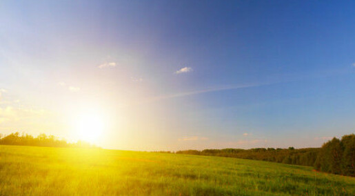 Too much vitamin D can kill you
