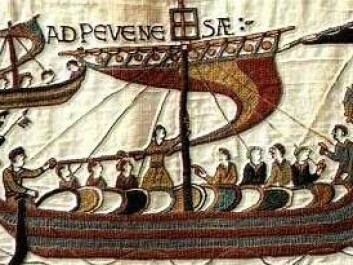 Historians also use the famous Bayeux Tapestry as a source when trying to determine what the Vikings looked like. The tapestry depicts the Battle of Hastings in 1066.