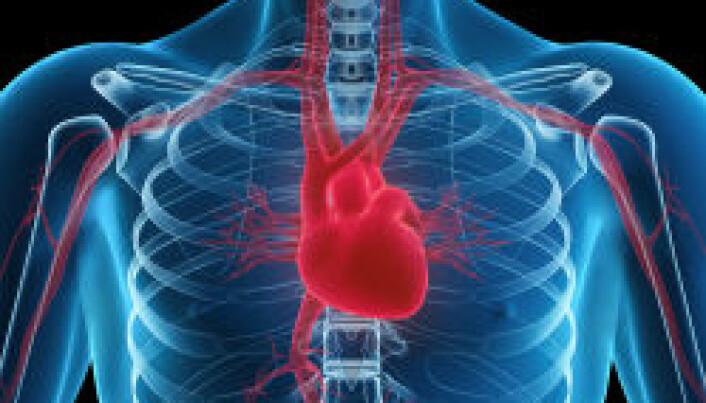 Longer heartbeats could shorten lives