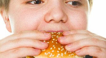 Obesity risks for only children