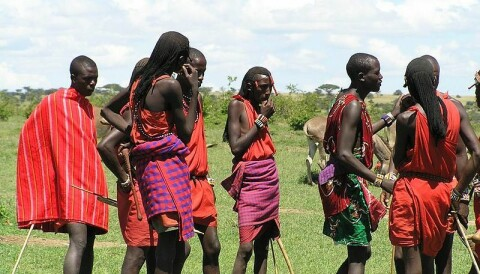 The Maasai keep healthy despite a high-fat diet