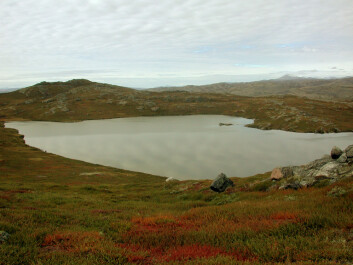 This small lake in southwestern Greenland has just the right size, depth and location for scientists to extract sediment cores and draw up a calendar of the North Atlantic Oscillations going back 5,200 years. (Photo: Mads Faurschou Knudsen)