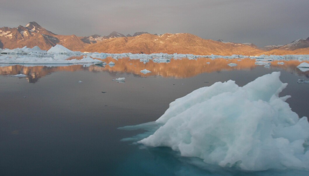 Tiny organisms in marine sediments off the coast of Southeast Greenland could help scientists forecast the weather this winter. (Photo: Camilla Andresen)