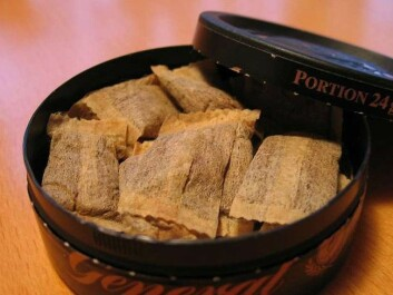 Swedish-produced snus is commonly sold in tiny single-portion pouches, whereas the Danish-produced variety consists of the original loose tobacco product, also called snuff. (Photo: Tigerente/Wikimedia Creative Commons)