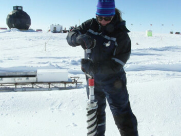 Astrid Schmidt doing fieldwork on the inland ice (Photo: Astrid Schmidt)