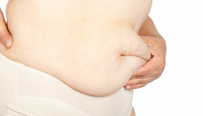 Researchers: rapid weight loss is the best