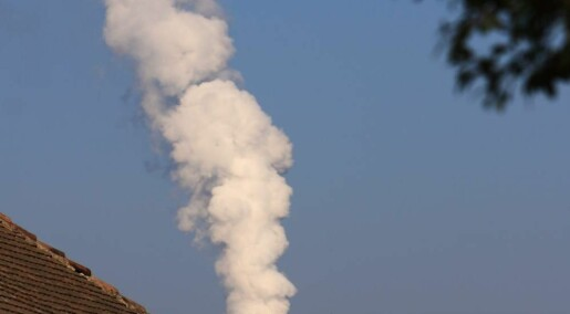 Short-term exposure to high concentrations of wood smoke has no long-term effect: study