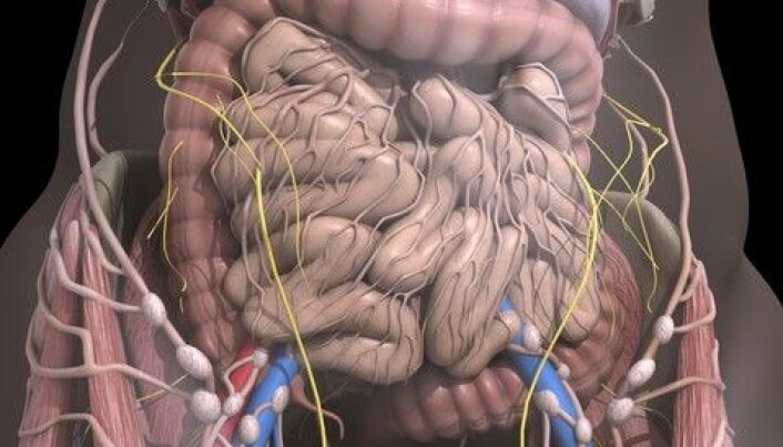 Our intestinal bacteria have national characteristics
