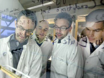 The Swedish research team. Pictured from left: Jerker Fick, Jonatan Klaminder, Tomas Brodin and Micael Jonsson, all from Umeå University. (Photo: Johan Gunséus)