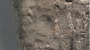 New technique reveals rare pattern on Stone Age adze