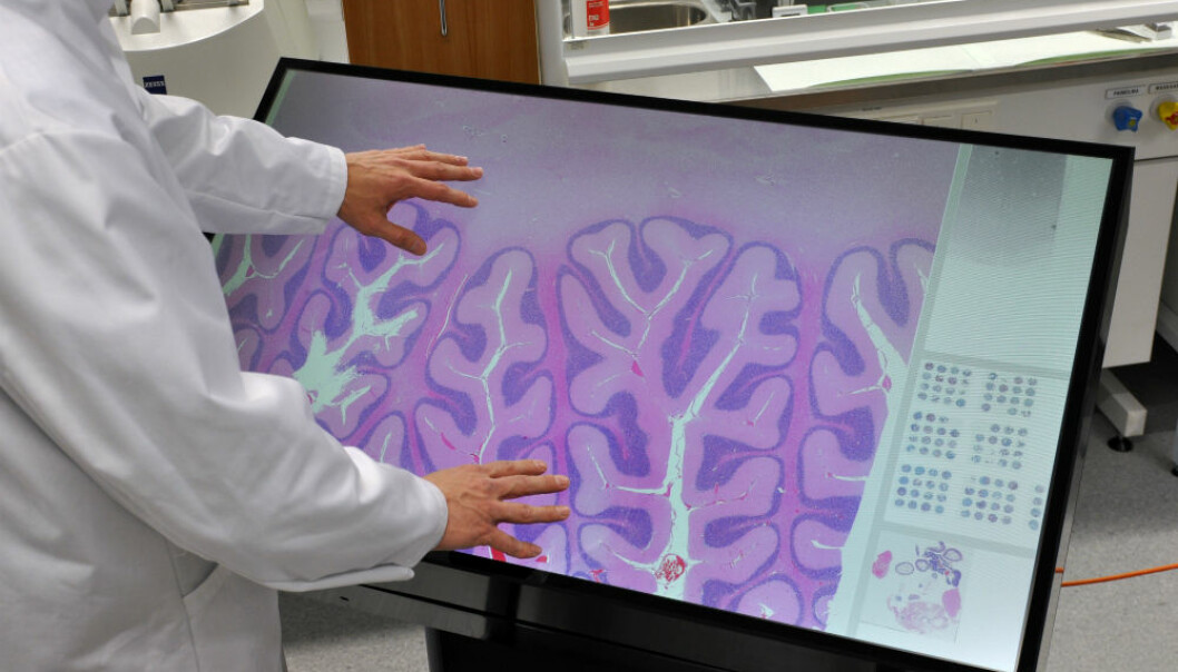 The multitouch microscope integrates two Finnish innovations and brings new dimensions into teaching and research. (Photo: Visa Noronen)