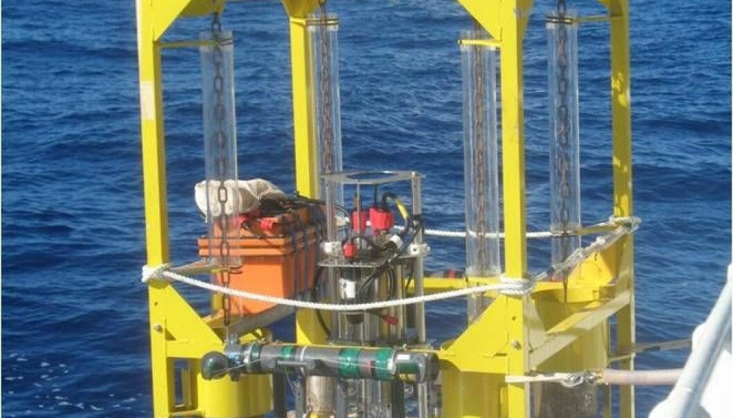 Researchers have found an extraordinarily active bacterial community at the bottom of the Mariana Trench. The discovery was made with this instrument, which measures the amount of oxygen in the sediment at the bottom of the trench. (Photo: Anni Glud)