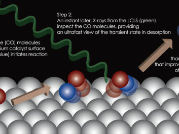 This illustration shows the different steps that occur when CO molecules start to break away from the surface of a catalyst. A laser pulse triggers the molecular reaction, while an X-ray laser pulse examines and 'takes photographs' of the molecular movements. (Graphic: Hirohito Ogasawara/SLAC National Accelerator Laboratory.)