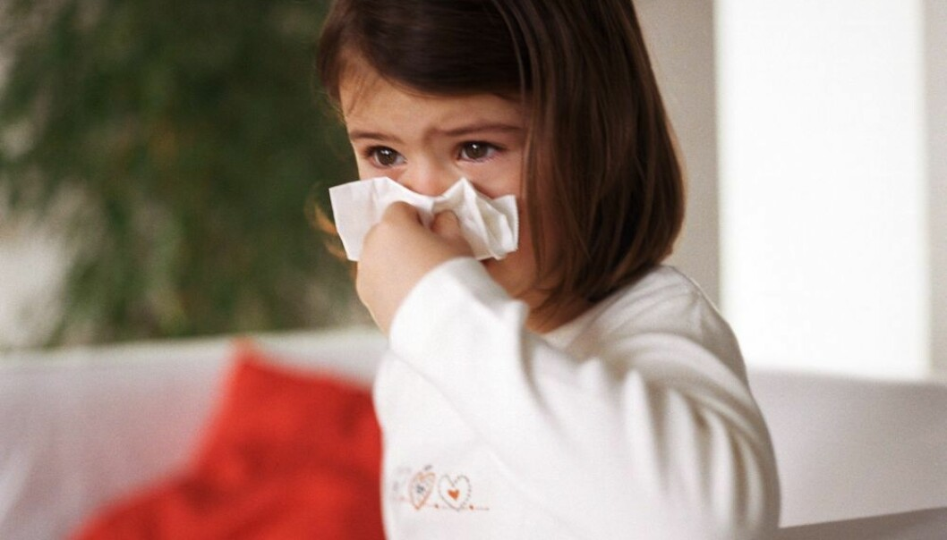 A common cold caused by a rhinovirus can trigger asthma in children with a particular gene. Unless you manage to fend off all colds, there is nothing you can do – neither as a parent nor as a child – to prevent it from happening. (Photo: Colourbox)