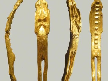 Close-up of the golden figurine. Note the belt and the rings around the feet and the arms. (Photo: René Laursen)