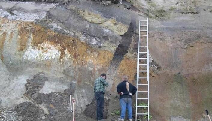 Danish pollen reveals new interglacial period