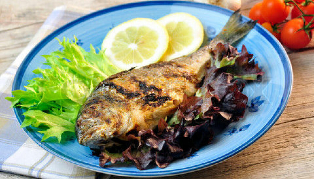 The healthy choice – eating fish – may not be healthy for our hearts after all. It may actually increase the inflammation that leads to blood clots. This is a topic for upcoming studies after some rather startling findings in a new study of the Inuit diet. (Photo: Colourbox)