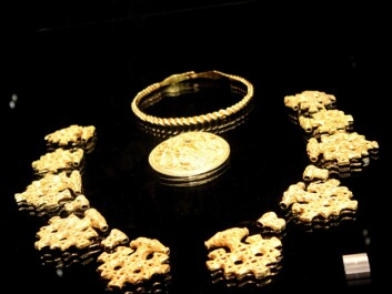 A Viking treasure found on the Hiddensee island in Germany. This used to be a chain consisting of 16 items of pure gold, and was presumably made in Denmark in the 10th century. (Photo: Asbjørn Mølgaard Sørensen)