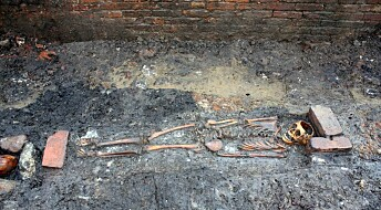Decomposed organs reveal skeletons' last days