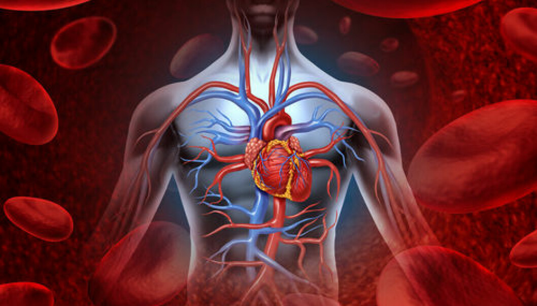 """All cells in the human body contain enzymes known as Na+/K+-ATPase, or sodium pump enzymes, which help keep us alive. If certain pumps are malfunctioning, it could have fatal consequences for the heartbeat, blood circulation, brain function, etc. (Photo: <a href="""" http://www.shutterstock.com/"""" target=""""_blank"""">Shutterstock</a>)"""