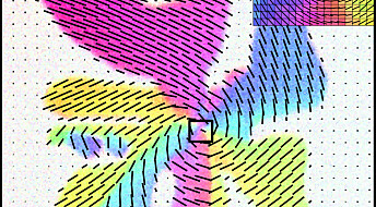 Mechanism behind weird membrane patterns revealed