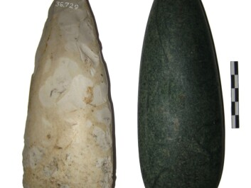 It is point-butted axes like these that Danish archaeologist Lasse Sørensen has studied. His study concludes that the first Scandinavian farmers were immigrants. Pictured on the left is a point-butted axe in flint. The one on the right is made from jade. (Photo: Lasse Sørensen)