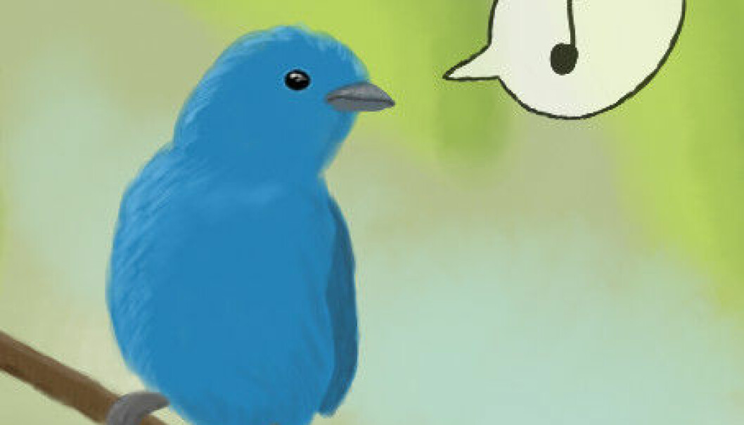 Messages travel fast on a social medium like Twitter. The greatest coverage occurs as early as after 15-20 minutes, and after 24 hours it dies out again. (Illustration: Faldrian)