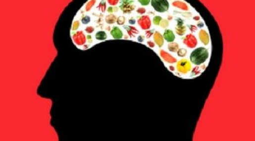 Unknown 'food function' discovered in the brain