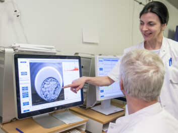 Researchers at Aarhus University Hospital studying the development of an egg. (Photo: Kristian Bang, Aarhus University Hospital)