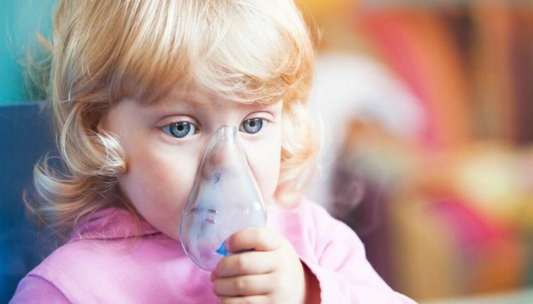 "Severe asthma attacks place a great burden on children and their families. Danish researchers are at the forefront of finding a cause, as they can hand pick the sickest children from Denmark's unique national health registries of hospitalisation. (Photo: <a href="" http://www.shutterstock.com/"" target=""_blank"">Shutterstock</a>)"