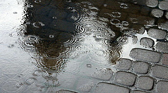 The best way to remove substances from rainwater