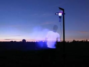Night traps were set up to catch the tiny midges. The midges are attracted to ultraviolet light and are then sucked into a container below the trap. (Photo: Carsten Kirkeby)