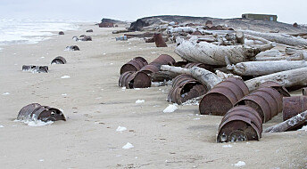 Even tiny oil spills may break Arctic food chain
