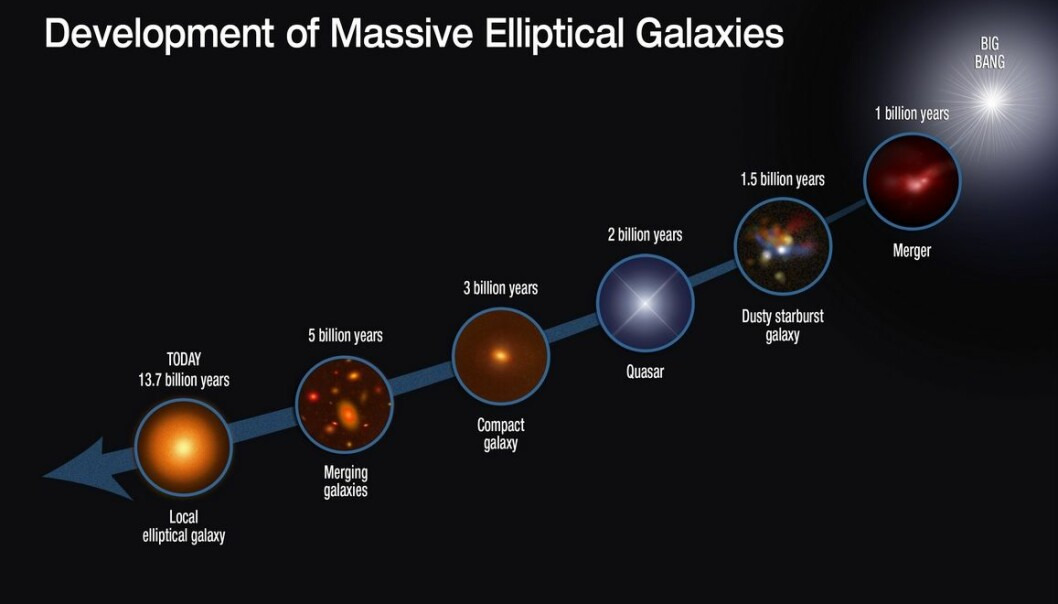 This graphic shows the evolutionary sequence in the growth of massive elliptical galaxies over 13 billion years, as gleaned from space-based and ground-based telescopic observations. The growth of this class of galaxies is driven by rapid star formation in the so called SMG galaxies and mergers with other galaxies (NASA, ESA, S. Toft og A. Feild)