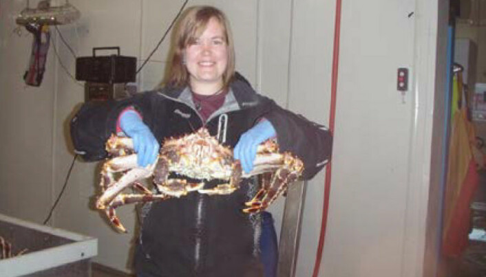 Respiratory problems plague king crab workers