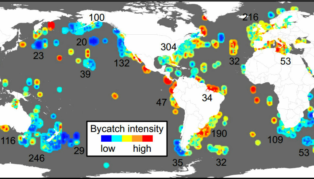 This map shows hotspots of bycatch intensity across the globe. The numbers indicate how much data is available from each area. (Illustration: PNAS)