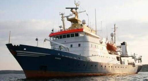 Copenhagen invaded by research fleet