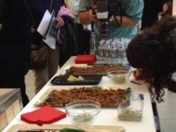 To demonstrate how other cultures use insects, visitors to the 'Food in the Future' event were offered deep-fried crickets and grasshoppers. (Photo: Anne Marie Lykkegaard)