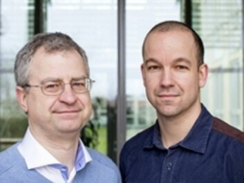 Researchers Jan Dumanski and Lars Forsberg were surprised to find the link between loss of Y chromosomes and mortality. (Photo: Mikael Wallerstedt, Uppsala University)