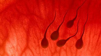 Sperm harmed by soaps and suntan lotions