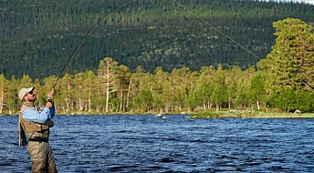 Fishing: Big increase in catch-and-release