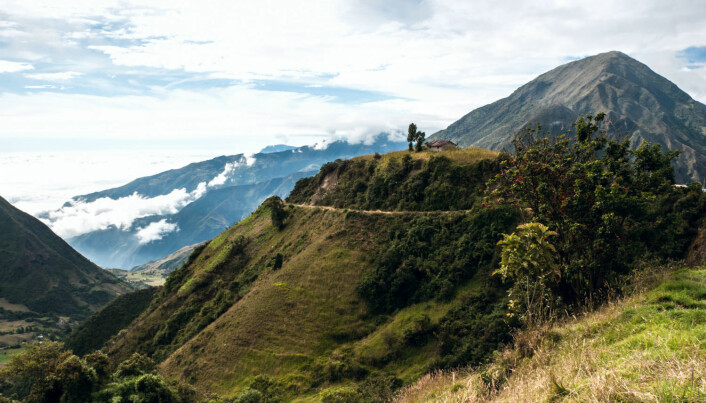 Carbon storage in the Andes makes economic sense