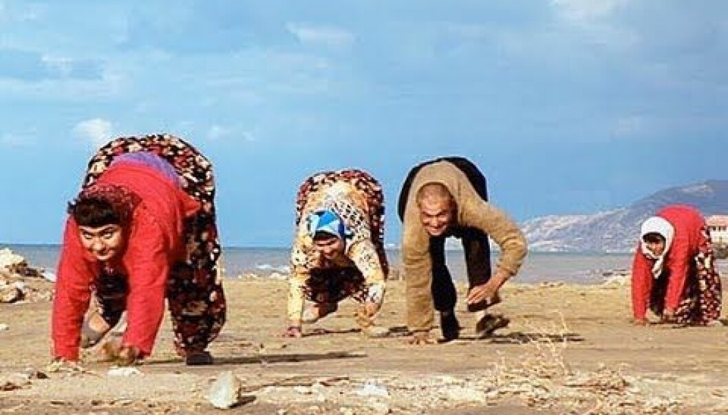 Defects in the cellular mechanisms can lead to a variety of problems in the centres of the small brain (cerebellum) which control balance.  That's why several members of this Turkish family walk on all fours. Danish researchers have found the molecular cause of one of the disorders that can lead to problems in the small brain. (Photo: YouTube)