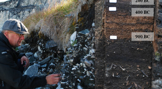 Rising temperatures could destroy Greenland's archaeological treasures