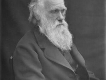 Before Charles Darwin published his famous theory of evolution, he needed to establish himself as a serious scientist. He partly achieved this by studying barnacles. Here is Darwin around the year 1874 (Photo: Wikimedia Commons)