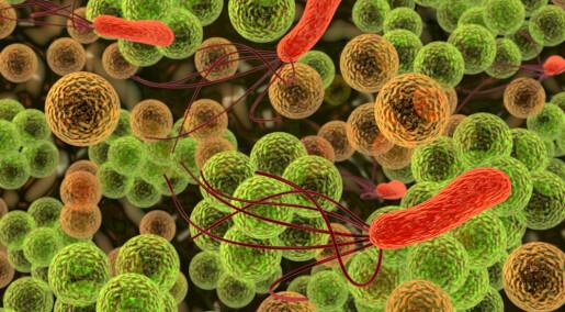 Antipsychotic drug fights resistant bacteria