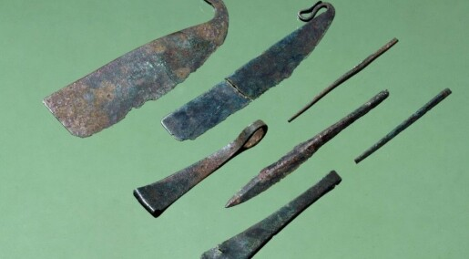 Ancient male warriors showed signs of vanity